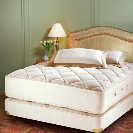 Quilt Top Mattress by Royal Pedic