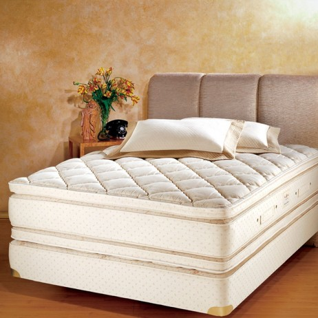 Cloud Pillowtop by Royal Pedic